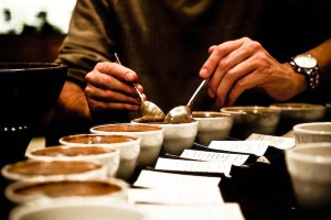 Coffee-Cupping